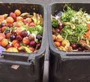 We Humans Throw Away 40% Of Our Food
