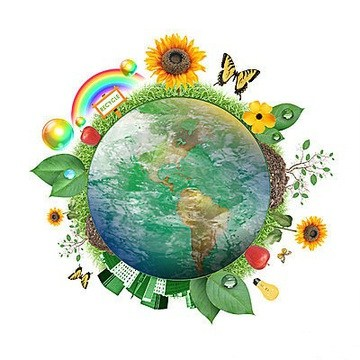 Ecoliteracy – Our Earth Is A Living System